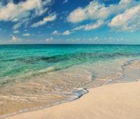 Retirement Nut Retiring On A Tropical Beach